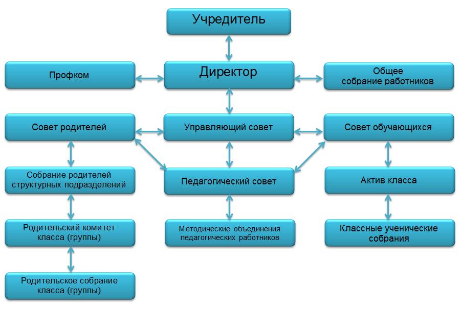 Структура и органы